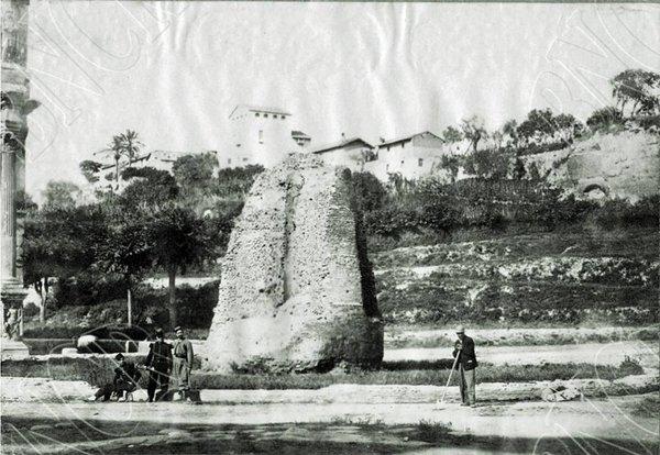 Meta Sudans.  1860.